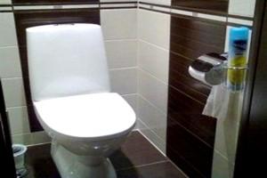Варианты укладки плитки в туалете