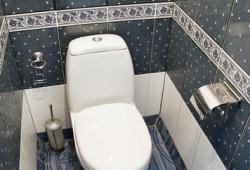 для туалета фото